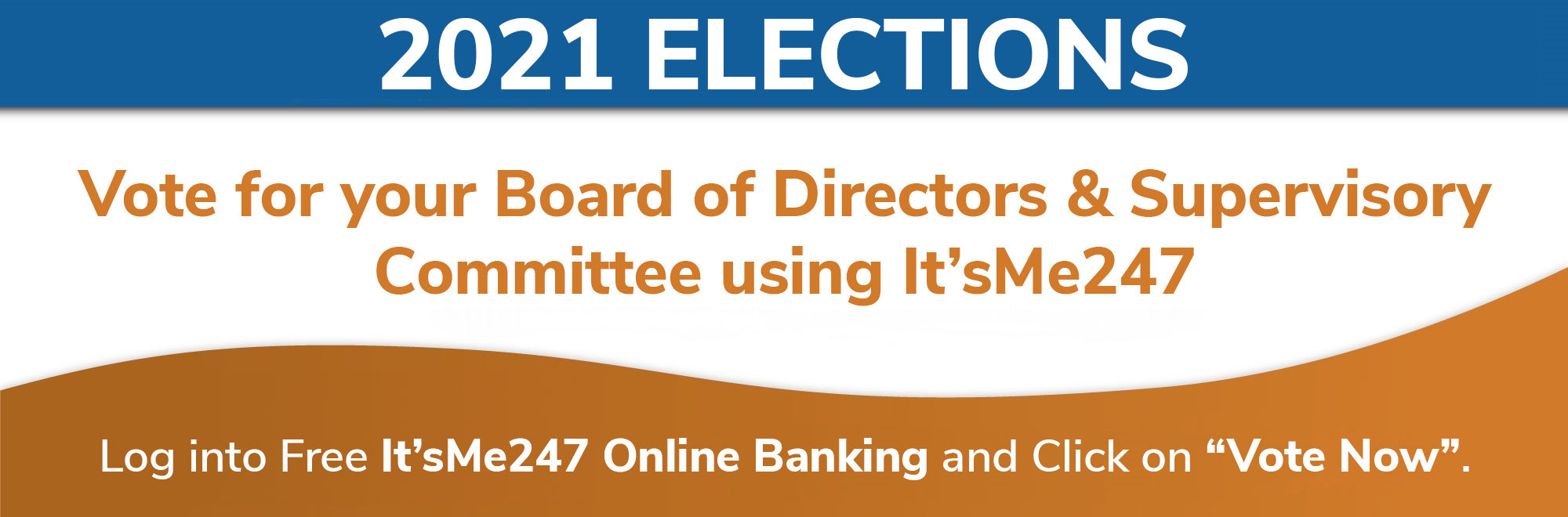 Vote Now – 2021 Elections
